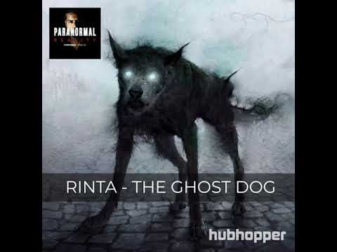 Rinta: The Ghost Dog