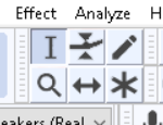 Audacity Selection tool